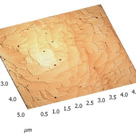 Monolayer steps on the Si surface