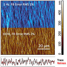 image of collagen fibers<br>captured @ 1 & 10Hz scanning rates